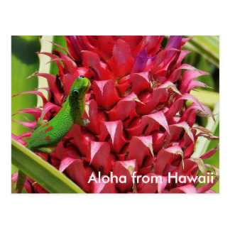 Ananas mignon Hawaï de rose de gecko de jour de la Cartes Postales