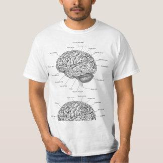 Anatomie de cerveau t-shirt