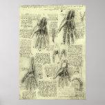 Anatomie de la main humaine par Leonardo da Vinci Affiche
