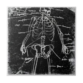 anatomie squelettique humaine de Tokyo de yaie Petit Carreau Carré