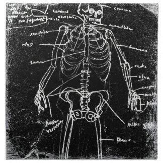 anatomie squelettique humaine de Tokyo de yaie Serviettes Imprimées