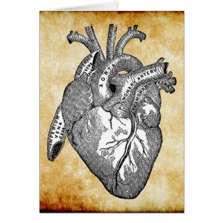 anatomie vintage de coeur carte de vœux