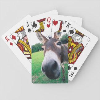 Âne Cartes À Jouer