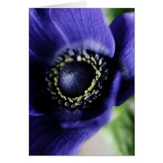 Anémone bleue carte de vœux
