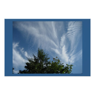 Anges de cime d'arbre posters
