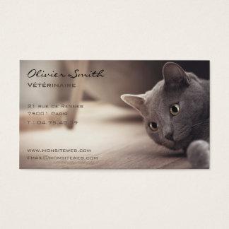 Animal de compagnie, beau chat. cartes de visite