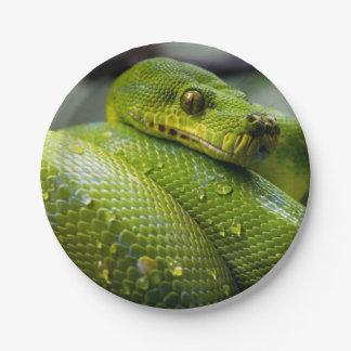 Animal de serpent de python assiettes en papier