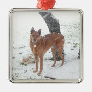 Animal familier de collection de Noël ou photo de Ornement Carré Argenté