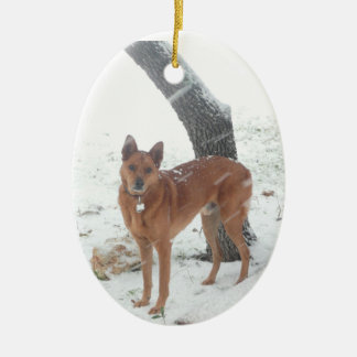 Animal familier de collection de Noël ou photo de Ornement Ovale En Céramique