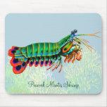 Animal Mousepad de récif de crevette de mante de Tapis De Souris
