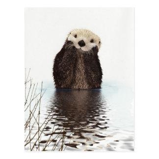 Animal pelucheux adorable mignon de loutre carte postale