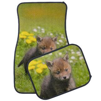 Animal pelucheux mignon de bébé de Fox rouge CUB, Tapis De Sol
