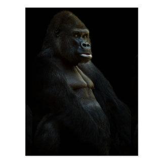 ANIMAL SAUVAGE DIGI du GORILLE gorilla-625286 Carte Postale