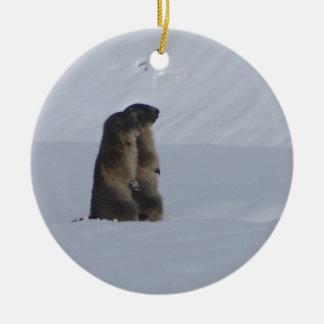 animaux marmottes sauvage ornement rond en céramique