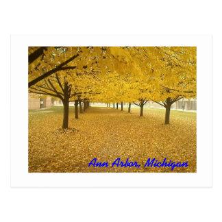 Ann Arbor dans l'automne Cartes Postales