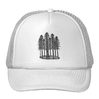 Anneau de cathédrale (croquis côtier de séquoias) casquette de camionneur
