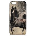 Année du cheval 2014 - art de peinture chinoise étuis iPhone 5C