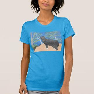 Annie le chat regardant au-dessus de la chemise de t-shirt