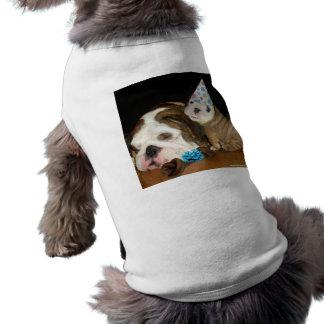 Anniversaire anglais de bouledogue manteaux pour animaux domestiques