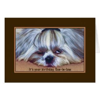 Anniversaire, beau-fils, chien somnolent de Shih Carte De Vœux