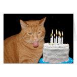 Anniversaire drôle de chat carte de vœux