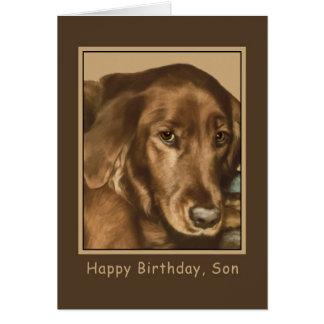 Anniversaire, fils, chien irlandais d'or carte de vœux