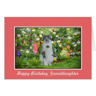 Anniversaire, petite-fille, chat parmi les fleurs carte de vœux