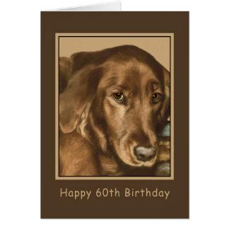 Anniversaire, soixantième, chien irlandais d'or cartes