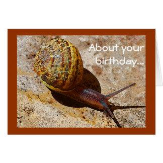 Anniversaire tardif de snail mail cartes