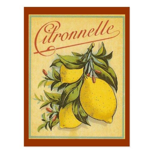 Annonce vintage de Citronnelle Cartes Postales
