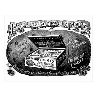 Annonce vintage étrange de pomme de terre carte postale