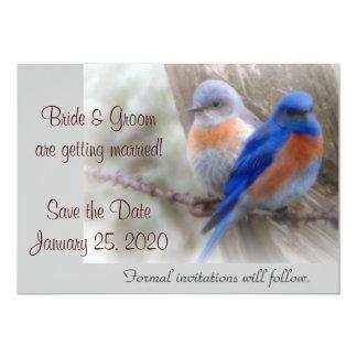 Annonces de mariage d'oiseau bleu carton d'invitation  12,7 cm x 17,78 cm