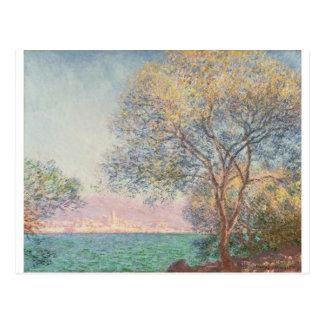 Antibes, pendant le matin (1888) carte postale