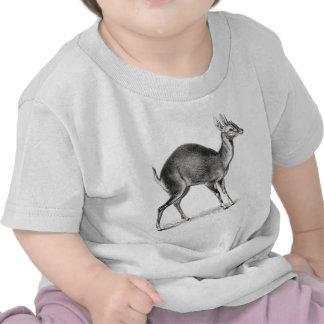 Antilope Quatre-À cornes T-shirts