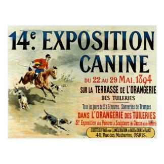antique style dog show postcard carte postale