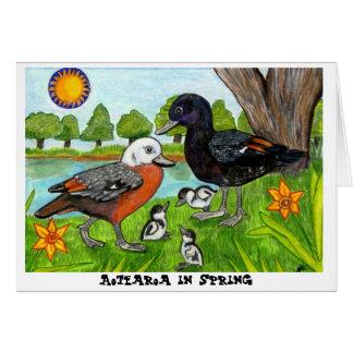 Aotearoa au printemps cartes
