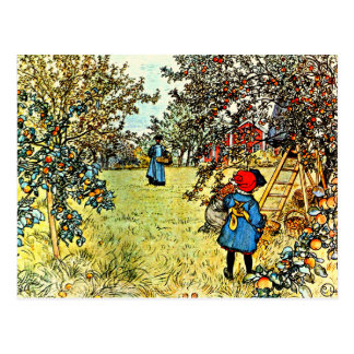 Apple moissonnent carte postale
