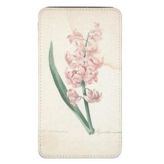 Aquarelle botanique vintage de jacinthe par Redout