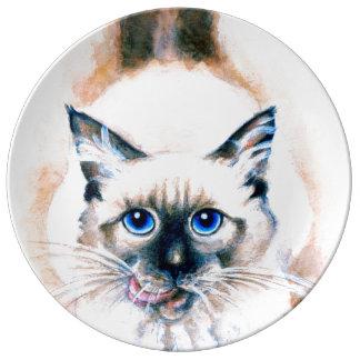 Aquarelle de chat siamois assiettes en porcelaine