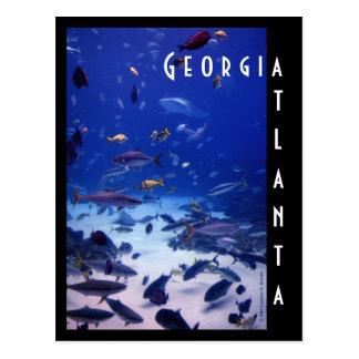 Aquarium d'Atlanta, la Géorgie Cartes Postales