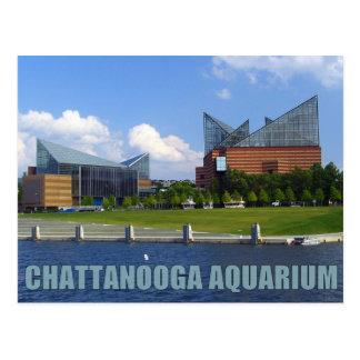 Aquarium de Chattanooga Carte Postale