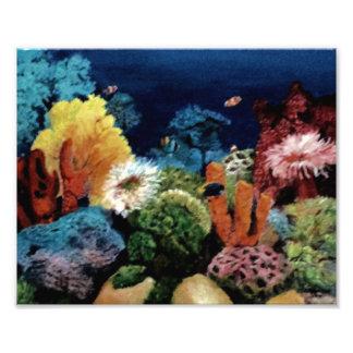 Aquarium tropical impression photo