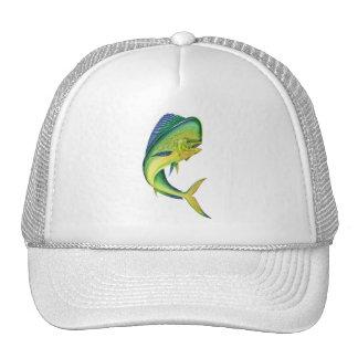aquariums des principal d'aquarium de mahi de mahi casquette trucker