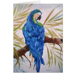 Ara bleu - carte vierge