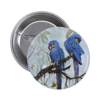 Ara de jacinthe juste pour vos cadeaux spéciaux badge