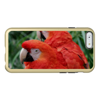Ara d'écarlate coque iPhone 6 incipio feather® shine