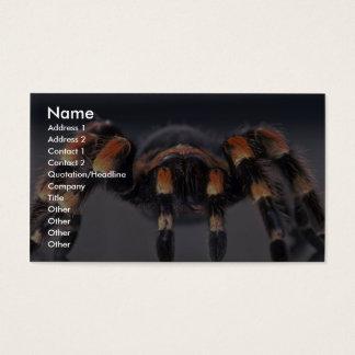 Araignée effrayante de tarentule cartes de visite