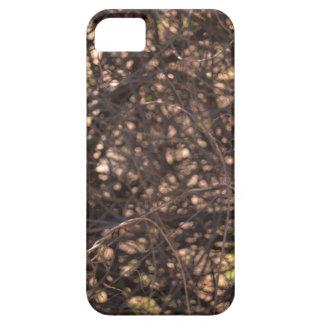 Arbre abstrait iPhone 5 case