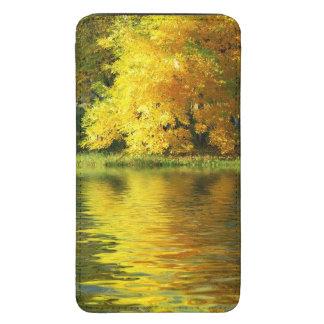 Arbre d automne dans la forêt avec la réflexion