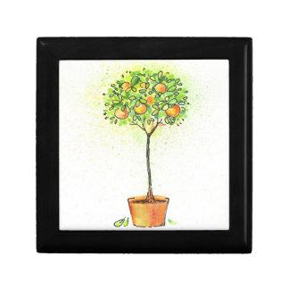 Arbre d'agrume peint d'aquarelle dans le pot petite boîte à bijoux carrée